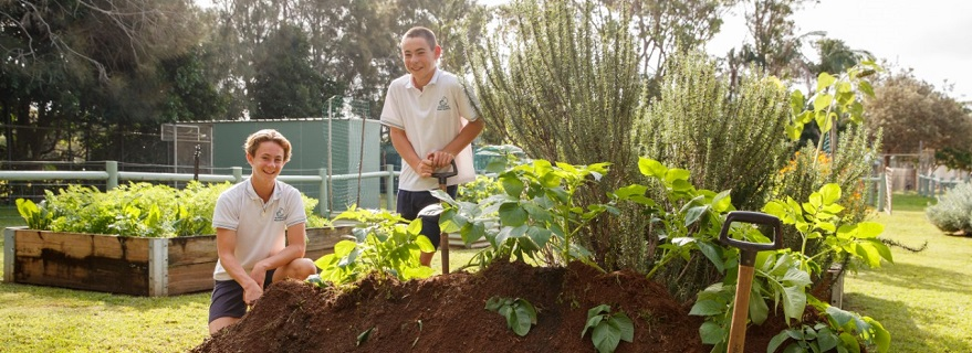 High school students using shovels to dig in veggie patch.